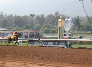 Beholder brings it Home - Race  8 - 6.13.15