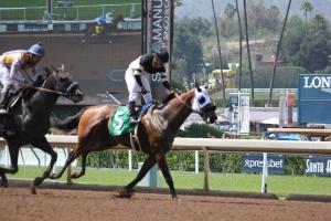 Signature Cat - Santiago Gonzalez - wins race 4 (6)