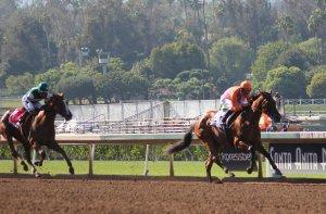 Beholder wins race 7 (3)