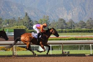 Beholder wins race 7 (9)