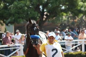 Ideal - race 5 - 6.18.16