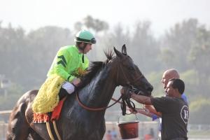 Melatonin - Joseph Talamo - winner race 9 (15)
