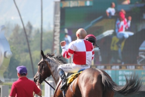 Songbird - Mike Smith - winner race 9
