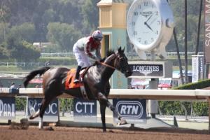 Taman Guard - Mike Smith - wins race 6 (5)