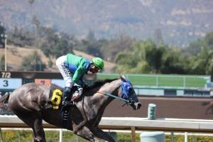 Theonewewaitedfor - Rafael Bejarano - wins race 5 (6)
