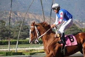 Valentine Boy - Rito Almanza - winner race 9