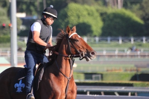 img_4822-desormeaux-decked-out