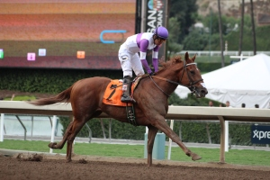 ann-arbor-eddie-mario-gutierrez-wins-race-9-5