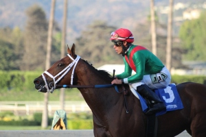 belvoir-bay-norberto-arroyo-winner-race-11-2