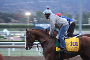img_2713-california-chrome