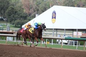 mesa-sky-kent-desormeaux-wins-race-2-2