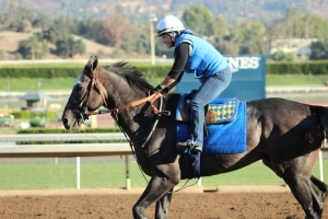 img_0224-baffert-arrogate