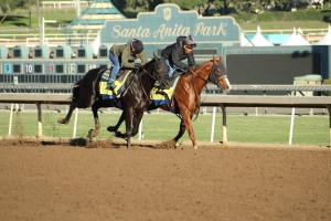 img_2498-baffert-dabster-rail-deep-caviar