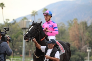 bettys-bambino-joel-rosario-winner-race-6-5