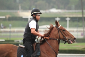 img_4592-desormeaux-decked-out