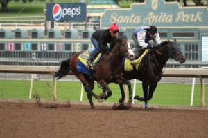 img_5700-baffert-jazzy-times-outside-mor-spirit
