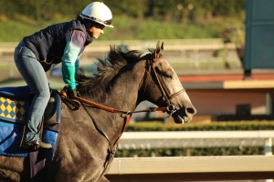 img_7325-baffert-arrogate