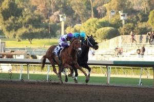 ann-arbor-eddie-duels-with-california-diamond-race-9-2