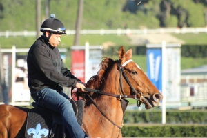 img_1646-desormeaux-decked-out
