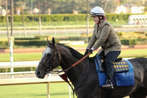 img_8503-baffert-arrogate
