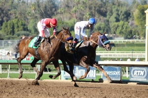 roman-tizzy-and-winning-causeway-come-to-the-wire-race-3-4