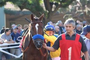 vale-dori-mike-smith-race-5-la-canada-3