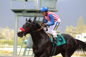 aristocratic-rafael-bejarano-winner-race-8