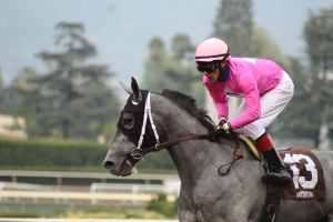 dahlia-azul-evin-roman-winner-race-5