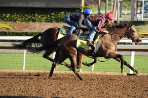 img_1705-baffert-baffert-noted-and-quoted-hot-perfection-rail