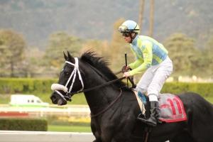 isotherm-flavien-prat-winner-race-9-3