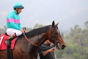 royal-mo-victor-espinoza-winner-race-robert-lewis-5