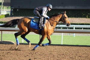 img_4927-baffert-hoppertunity