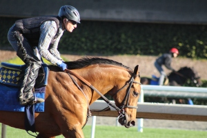 img_4962-baffert-hoppertunity