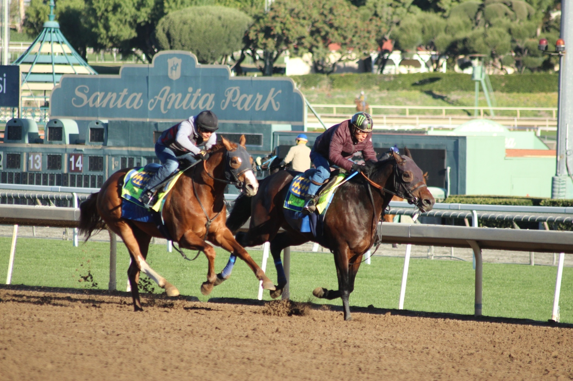 IMG_1222 - Baffert - Lontani - Call West (rail)