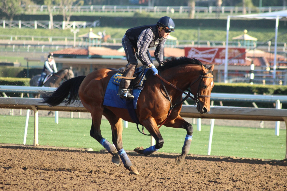 IMG_4141 - Baffert - Hoppertunity
