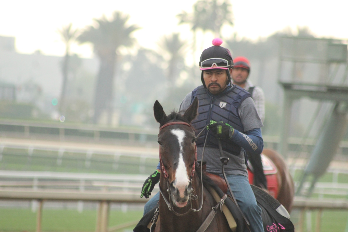 IMG_7291 - o'Nell - Lava MAn -