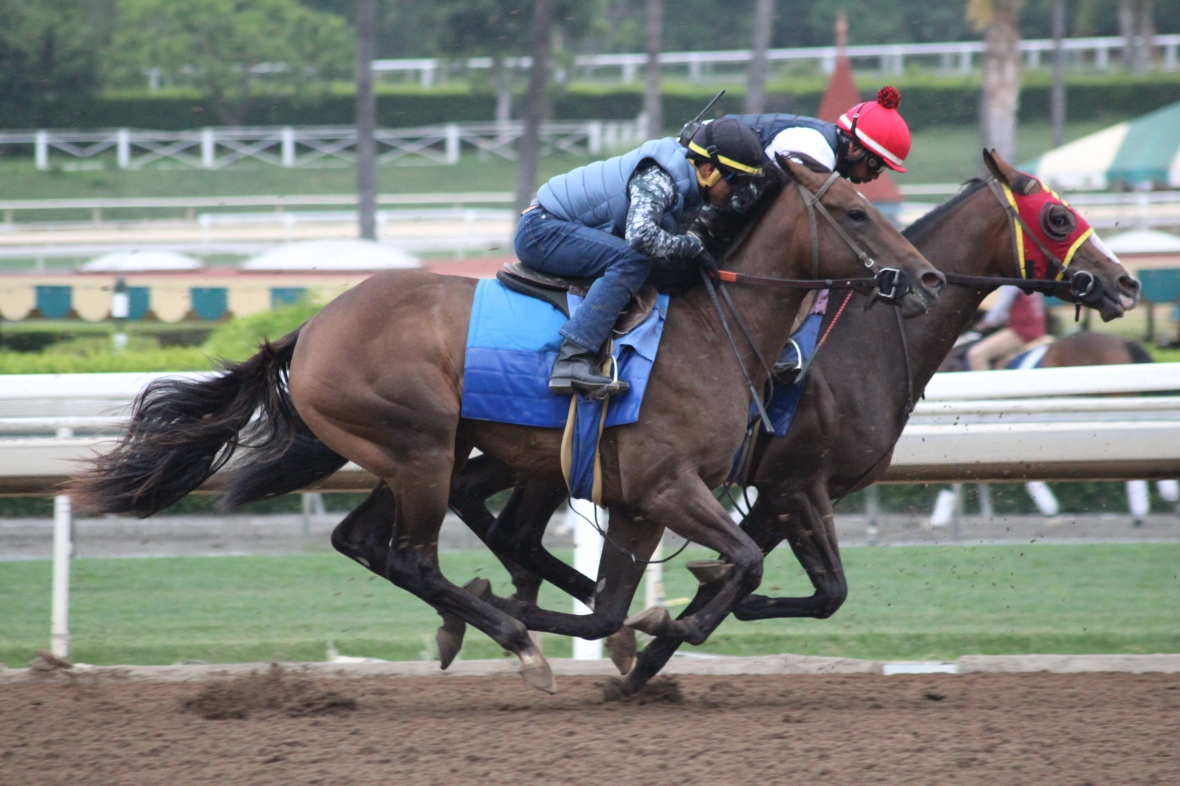 IMG_3280 - Yakteen - Hollywood Hills - Interesting Times (rail)