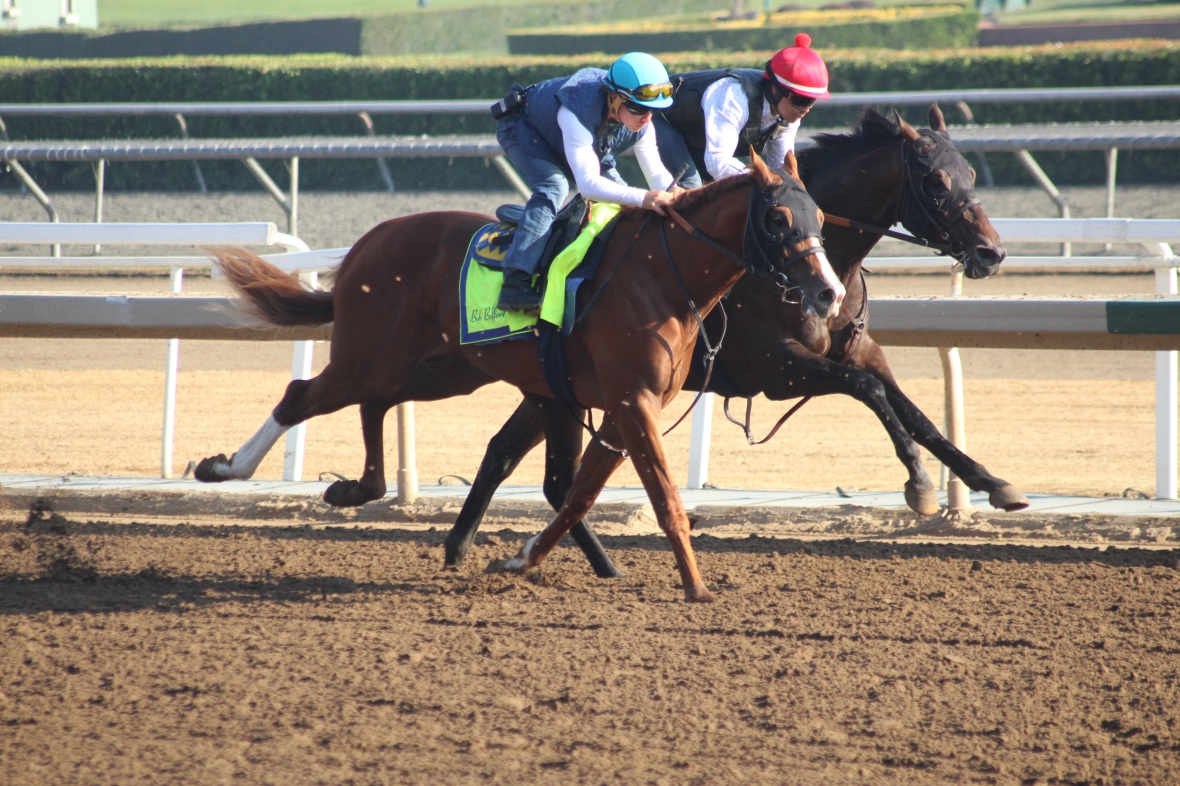IMG_6731 - Baffert - Unnamed Will Take Charge - Liszy - Whiskey Victor (rail)