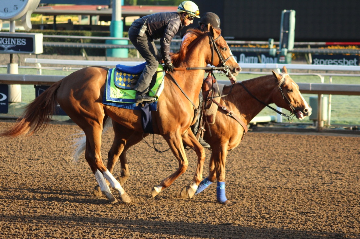 IMG_9329 - Baffert - Chasing Yesterday