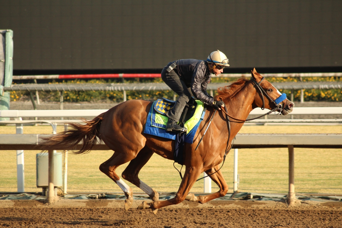 IMG_6444 - Baffert - Chasing Yesterday