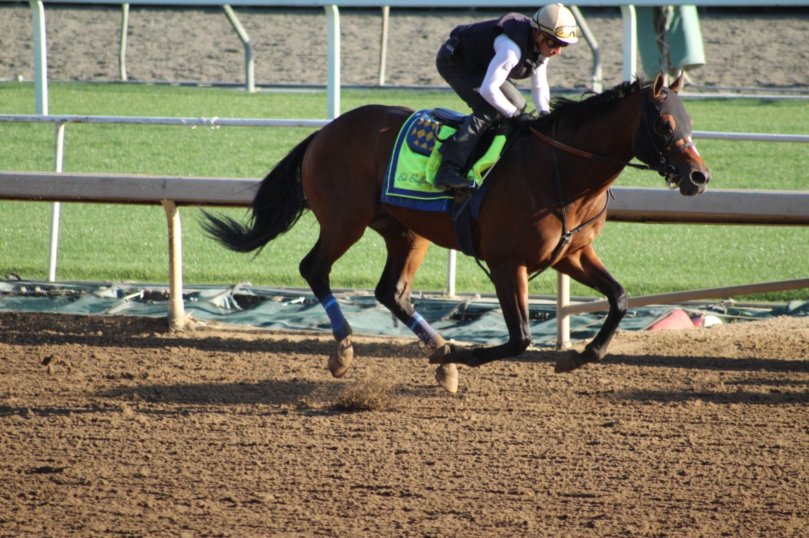 IMG_0591 - Baffert - American Anthem