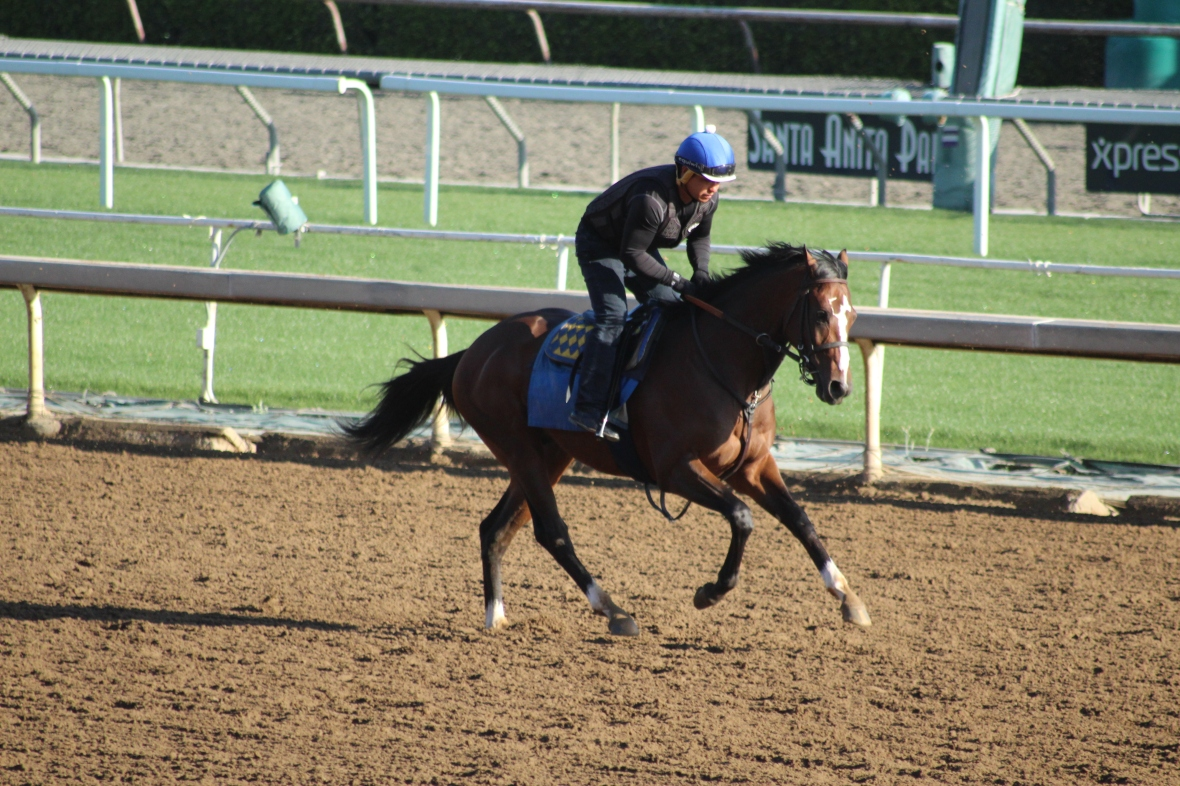 IMG_0694 - Baffert - Kingly