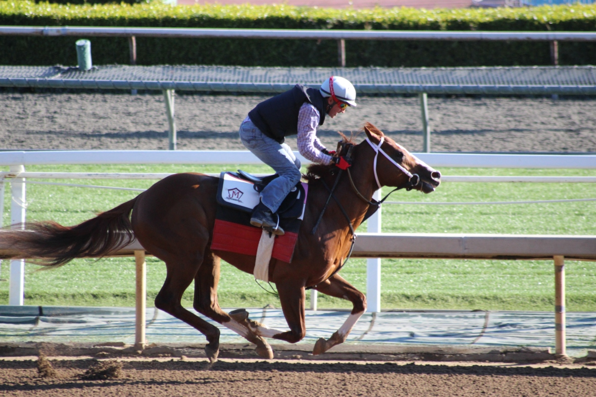 IMG_6010 - Mullins - Perfect Wager