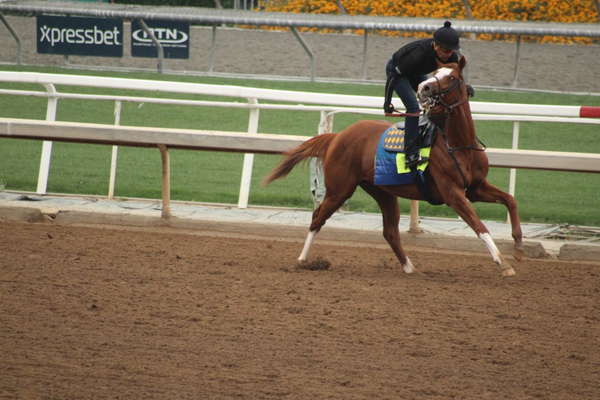 IMG_8901 - Baffert - Improbable