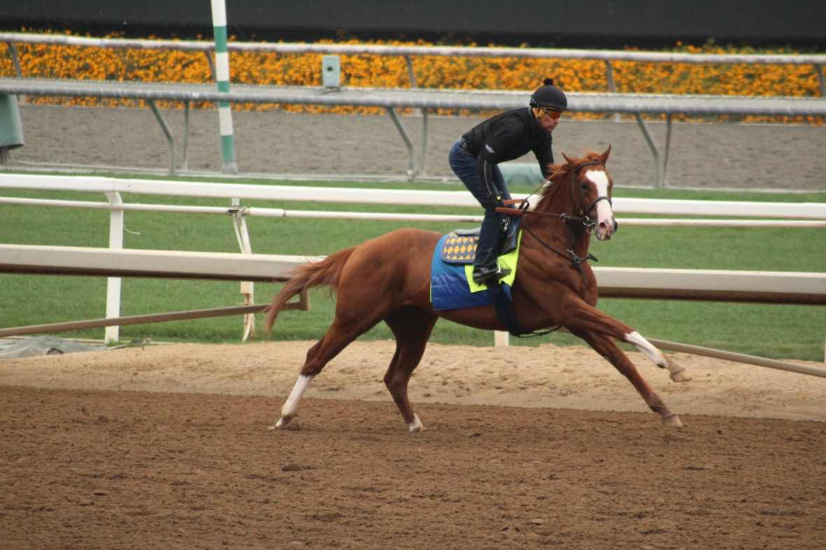 IMG_8903 - Baffert - Improbable