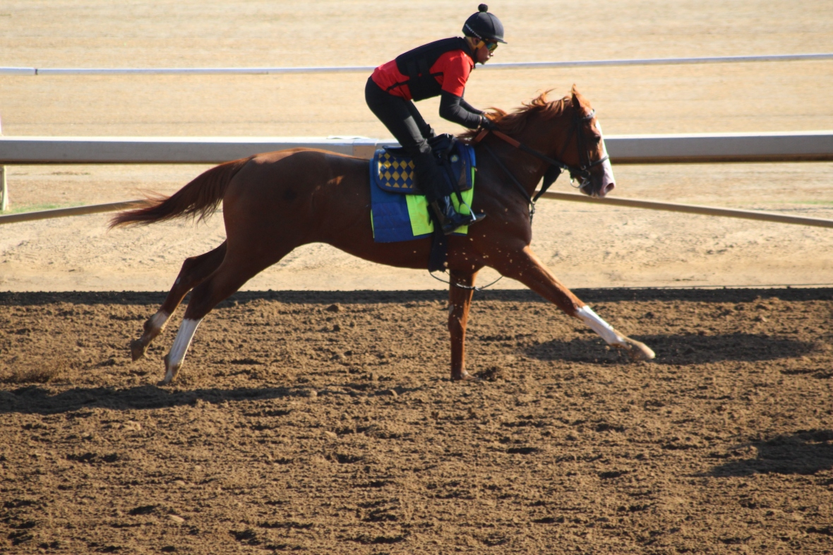 IMG_2836 - Baffert - Improbable