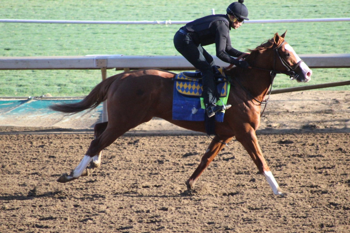 IMG_9056 - Baffert - Improbable