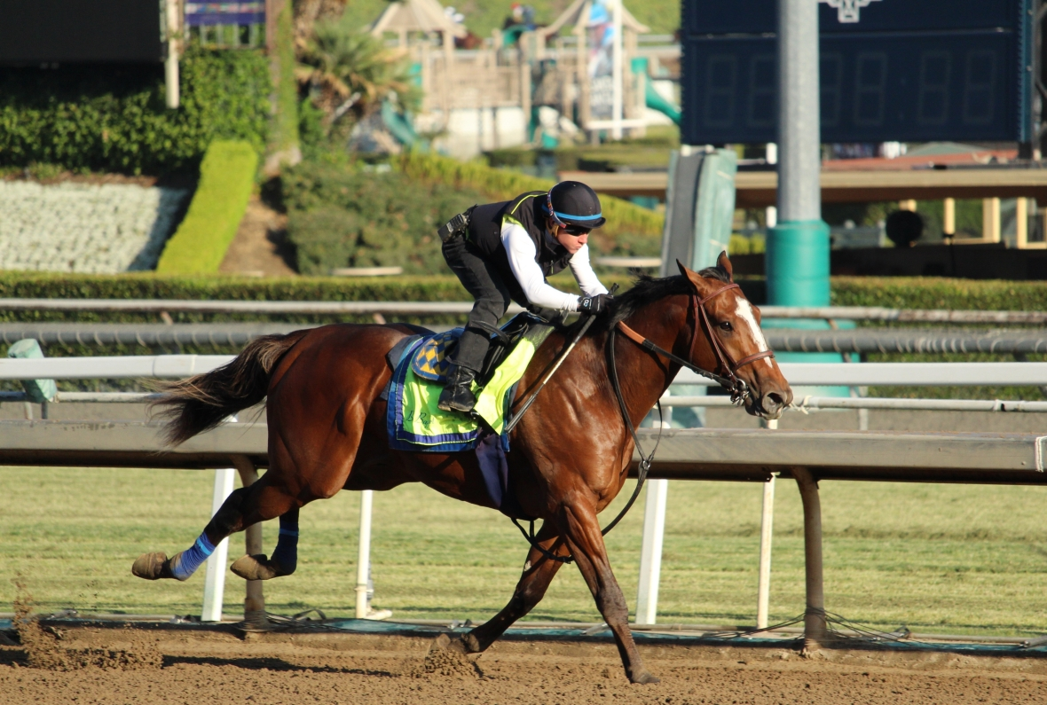 img_1079-baffert-garth-rail.jpg