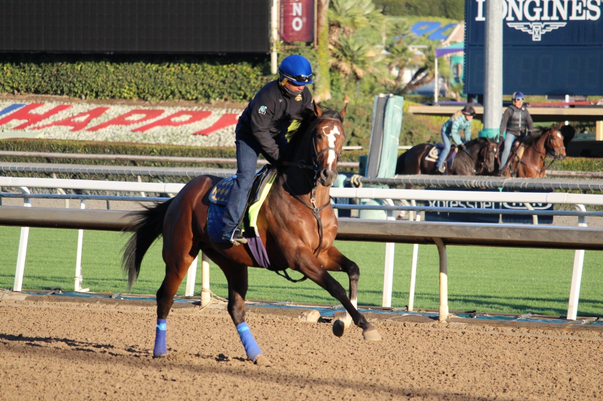 IMG_8939 - Baffert- Kingly