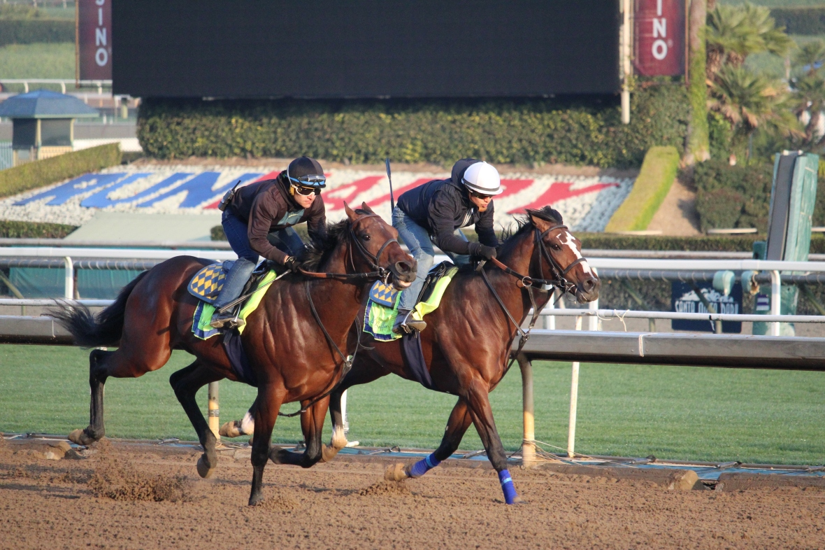IMG_1672 - Baffert- Kingly (rail) - American Code (outside)